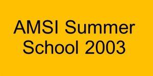 amsi-summer-school-2003-resized